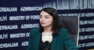 مسئلہ کشمیر کا سلامتی کونسل کی قرار دادوں کے مطابق پرامن حل چاہتے ہیں، آذربائیجان