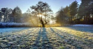ملک کے بیشتر حصوں میں موسم سرد اور خشک رہنے کا امکان