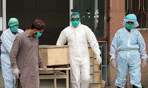 پاکستان میں کرونا سے مزید 47 اموات