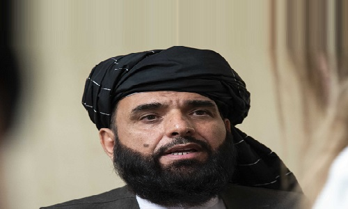 اس وقت افغانستان کو سنگین اقتصادی صورتحال کا سامنا ہے، سہیل شاہین