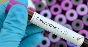 سندھ: کرونا وائرس سے مزید 8 اموات، 283 نئے کیسز رپورٹ