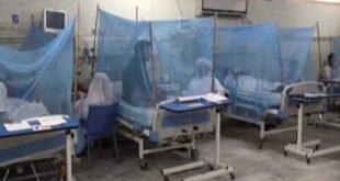 پنجاب میں ڈینگی وائرس کا پھیلاؤ جاری